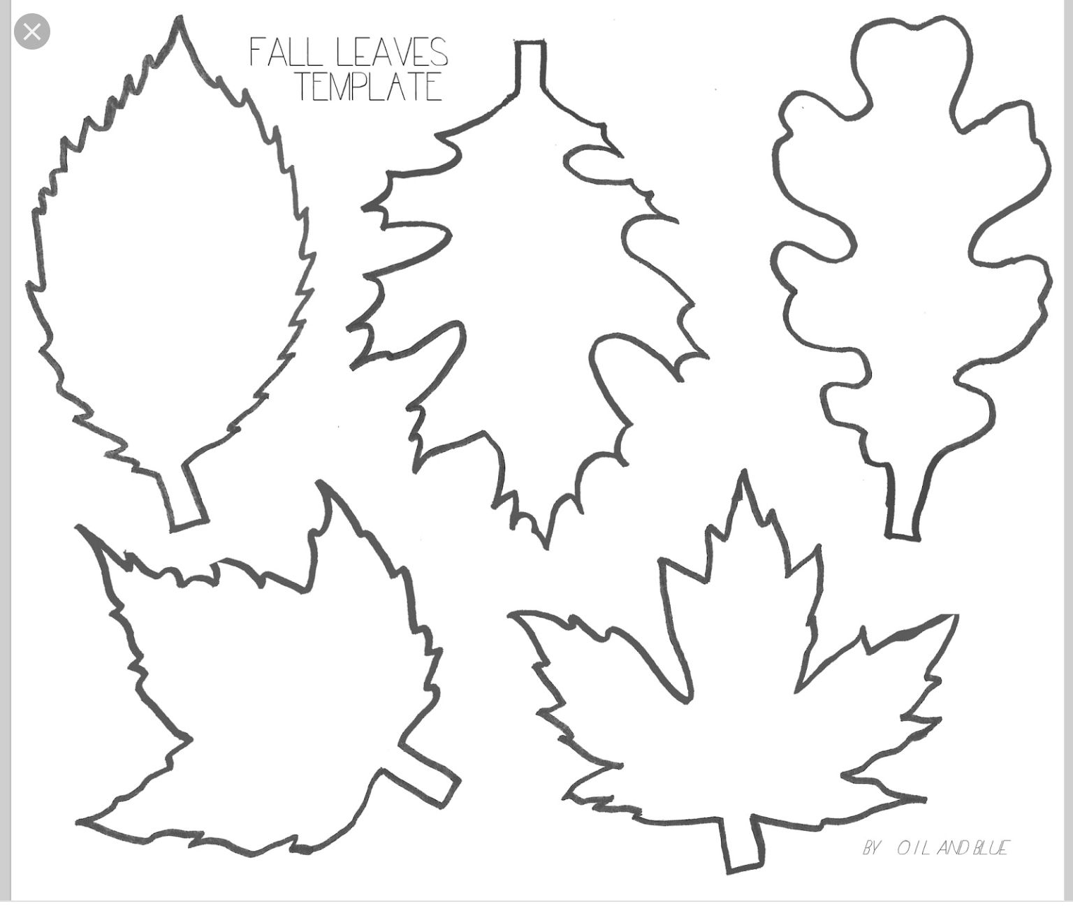001 Template Ideas Free Printable Leaf ~ Ulyssesroom - Free Printable Leaves
