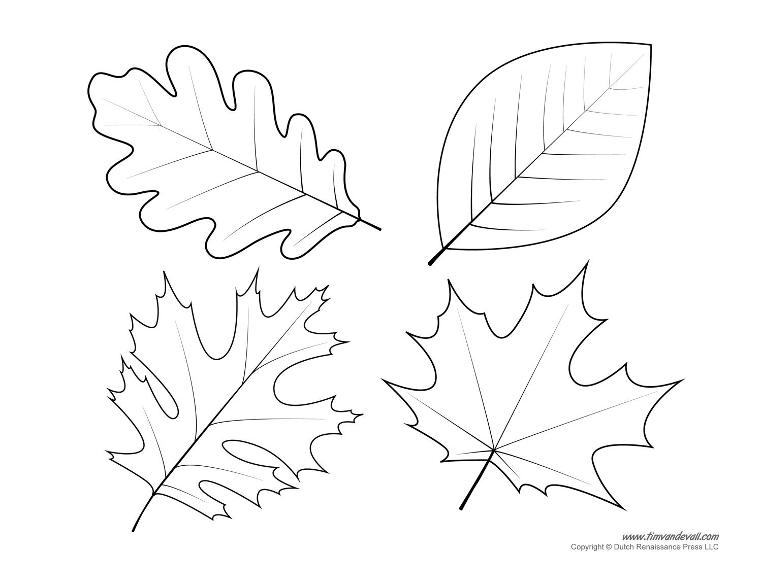 002 Free Printable Leaf Template ~ Ulyssesroom - Free Printable Leaves