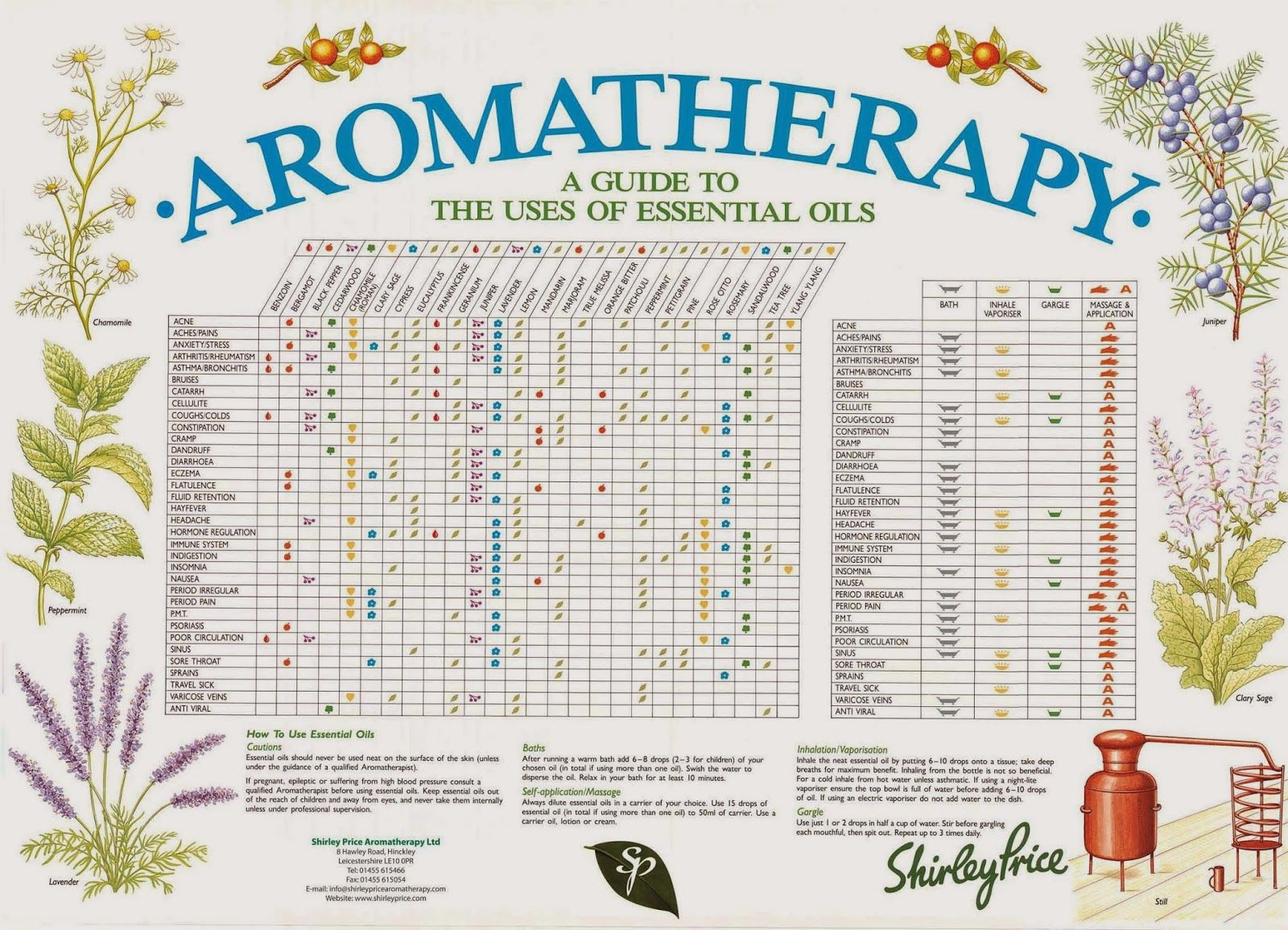 20. Reference Guide Essential Oils And Blends Quick Usage Chart 25 - Free Printable Aromatherapy Charts