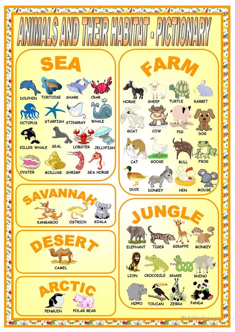 26 Free Esl Habitat Worksheets - Free Printable Worksheets Animal Habitats