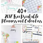 40+ Awesome Free Printable 2017 Calendars And Planners   Sparkles Of   Free Printable Organizer 2017