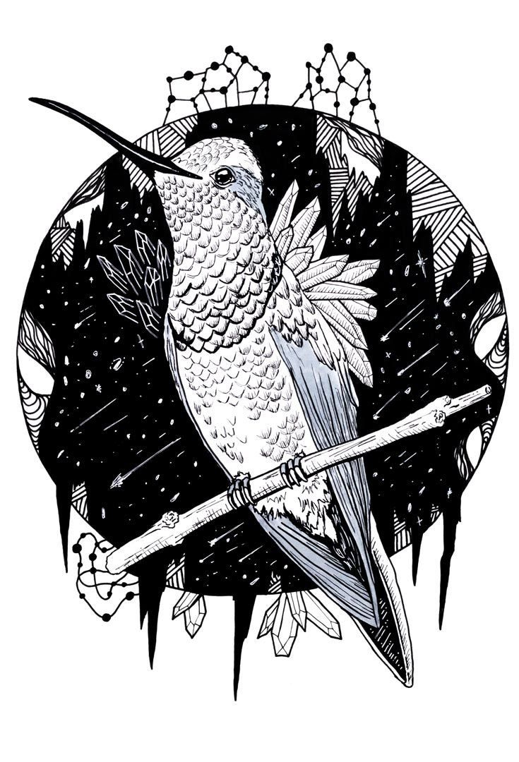 A Beautiful Collection Of Hummingbird Coloring Pages | Colorful Art - Free Printable Pictures Of Hummingbirds