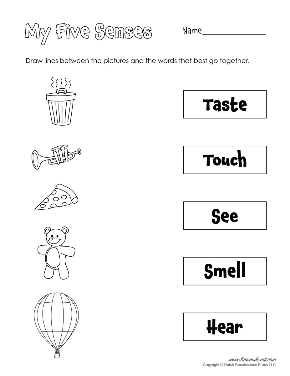 A Collection Of Printables That Are Useful For Everyday Classroom - Free Printable Worksheets Kindergarten Five Senses