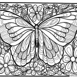Adult Difficult Big Butterfly Coloring Pages Printable   Free Printable Butterfly Coloring Pages