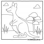 Australian Animals Colouring Pages | Brisbane Kids   Free Printable Pictures Of Australian Animals