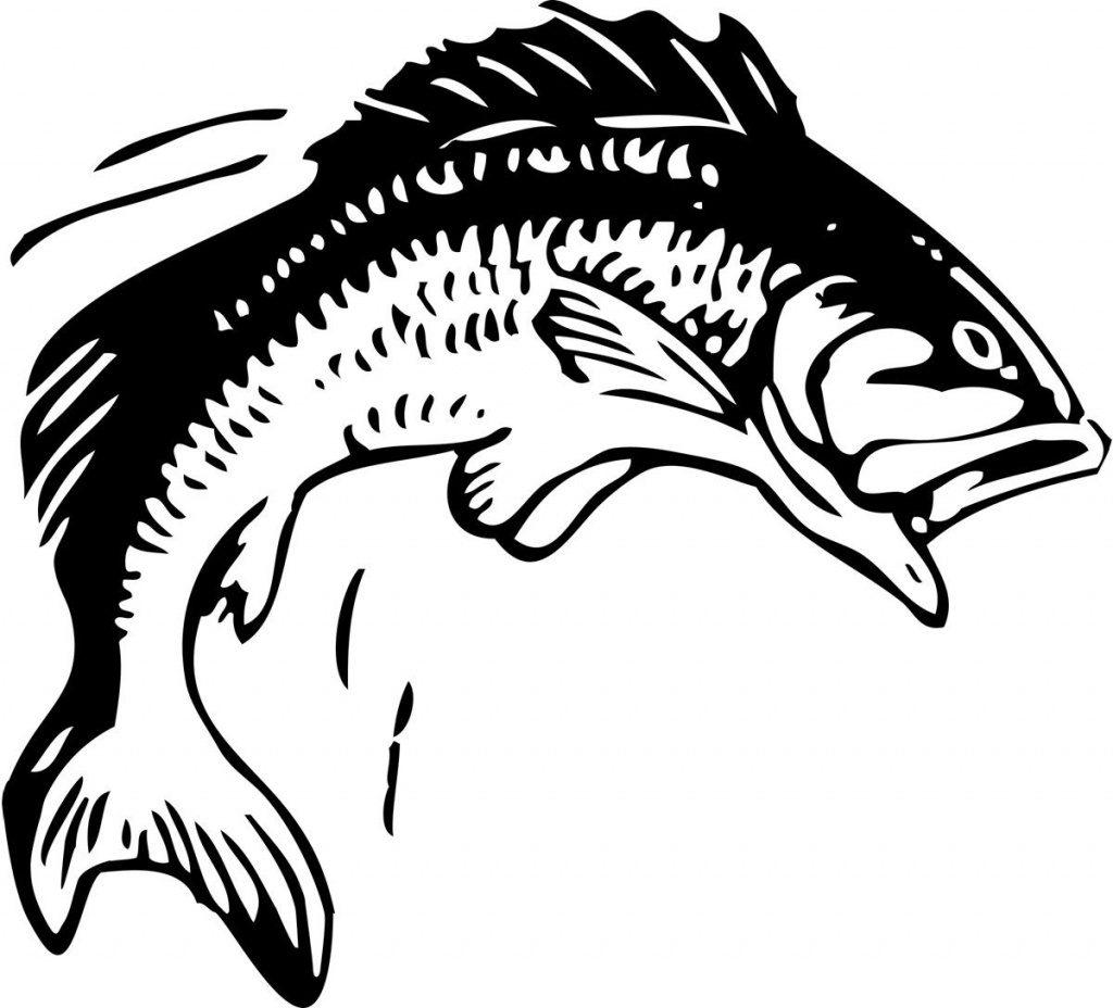Clip Art Fish Bass Fishing Clip Art Free Printable Fish Stencils - Free Printable Fish Stencils