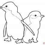 Coloring Pages : Penguin Coloring Sheet Outstanding Sheets For Kids   Free Printable Penguin Books