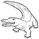 Crocodile Coloring Pages Realistic Page Free Printable 1200×1600   Free Printable Pictures Of Crocodiles