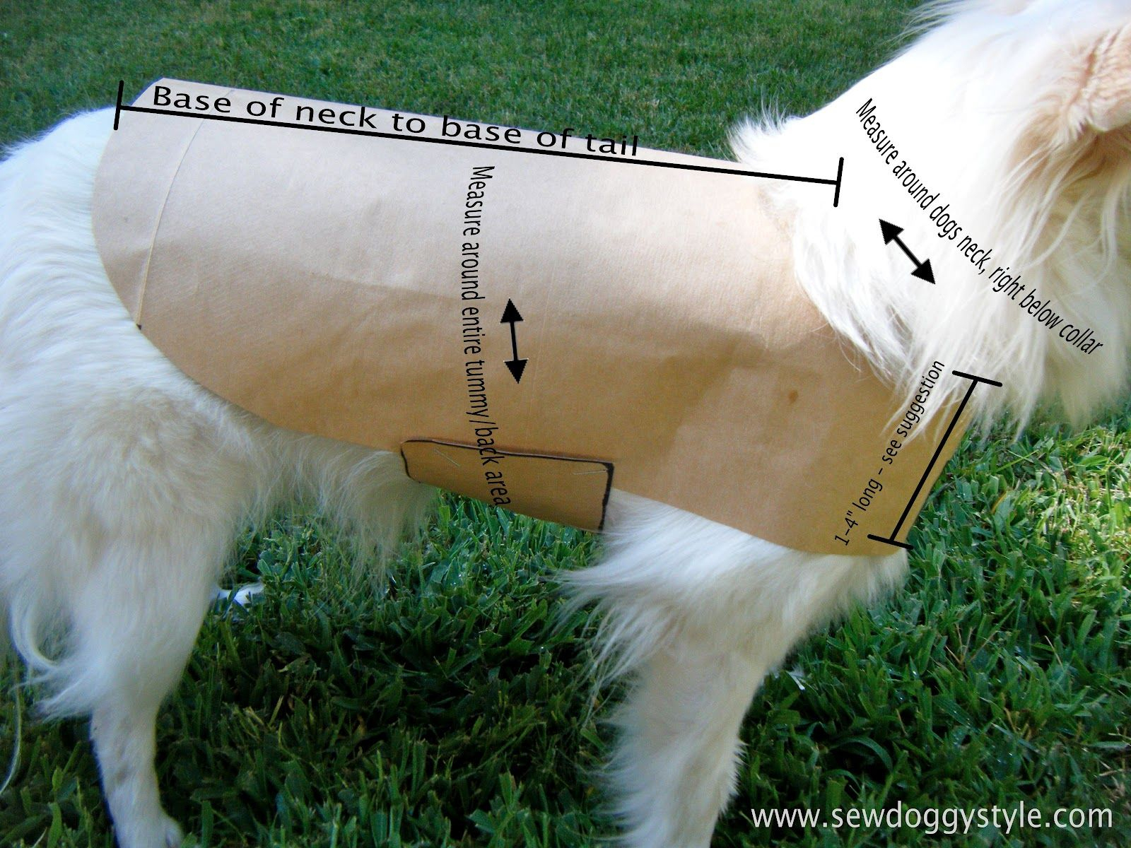 Drafting A Pet Coat Pattern - So Easy!   Crafts: Clever Crafts   Dog - Free Printable Sewing Patterns For Dog Clothes