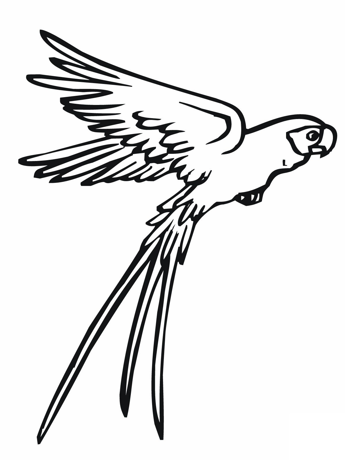 √ Free Printable Parrot Coloring Pages For Kids - Free Printable Parrot Coloring Pages