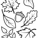 Fall Leaves And Acorn Coloring Page | Free Printable Coloring Pages   Free Printable Fall Leaves Coloring Pages