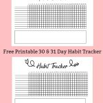 Free Printable A5 Habit Tracker   The Petite Planner   Habit Tracker Free Printable