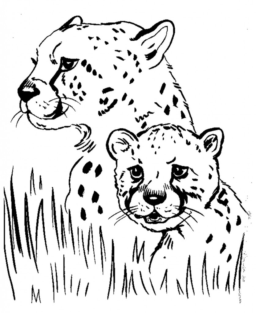 Free Printable Cheetah Coloring Pages For Kids | Coloriage Pour Les - Free Printable Cheetah Pictures