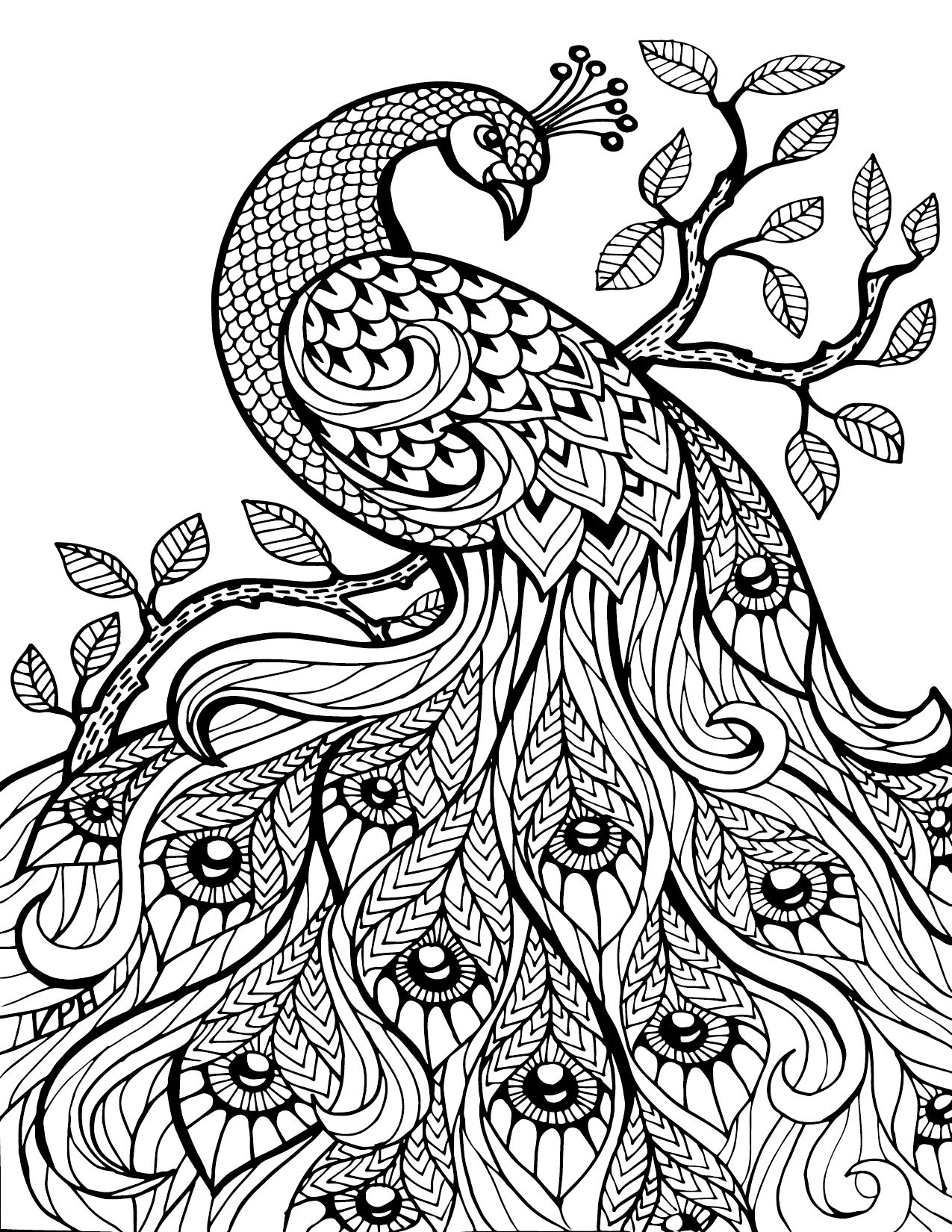 Free Printable Coloring Pages For Adults Only Image 36 Art - Free Printable Coloring Designs For Adults