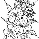 Free Printable Hibiscus Coloring Pages For Kids | Colouring, Drawing   Free Printable Hibiscus Coloring Pages