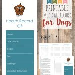 Free Printable Medical Record For Dogs   Tastefully Eclectic   Free Printable Pet Health Record