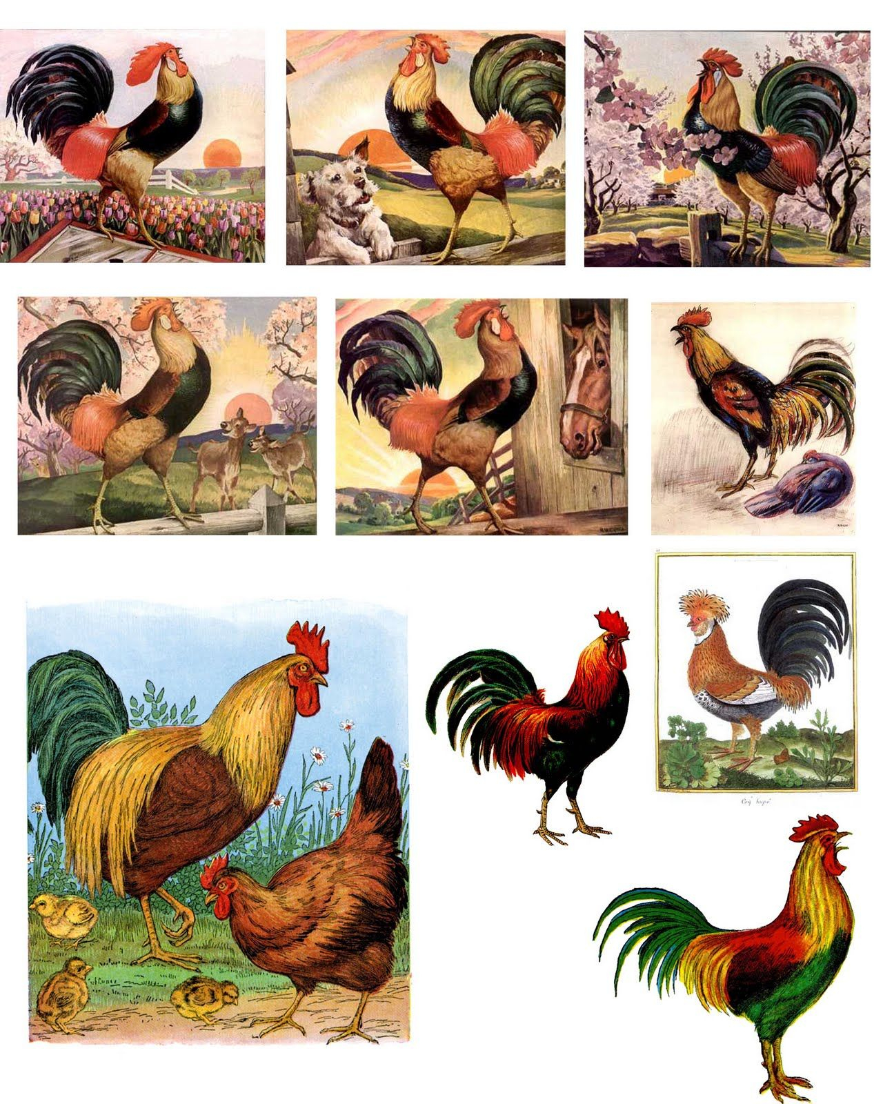 Free Printable Rooster | Free Digital Downloadsthe Timeless - Free Printable Pictures Of Roosters