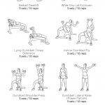 Full Body Workout: My Custom Printable Workout@workoutlabs   Free Printable Gym Workout Routines
