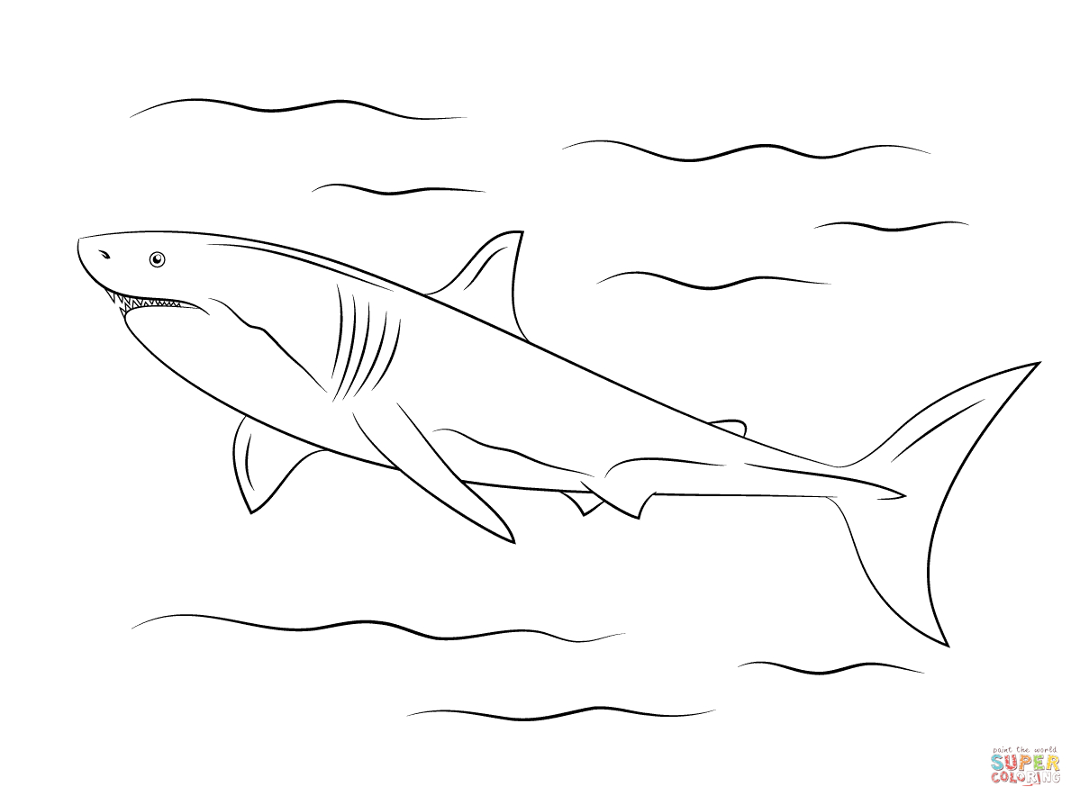 Great White Shark Coloring Page   Free Printable Coloring Pages - Free Printable Great White Shark Coloring Pages