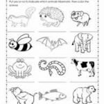 Hibernation Worksheets Regarding Free Printable Hibernation   Free Printable Hibernation Worksheets