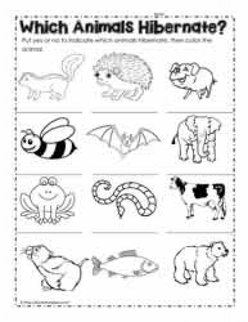 Hibernation Worksheets Regarding Free Printable Hibernation - Free Printable Hibernation Worksheets
