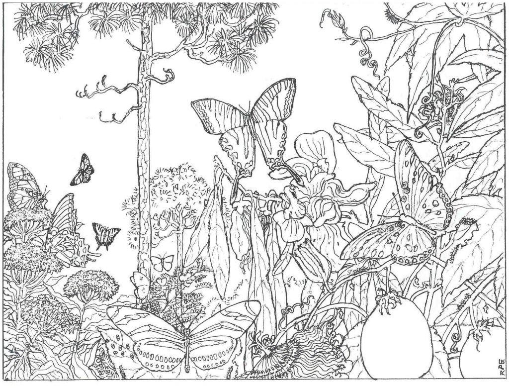 Impressive Free Printable Nature Coloring Pages Awesome Ideas #29854 - Free Printable Nature Coloring Pages