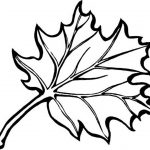 Leaf Coloring Pages Printable | Coloring Pages For Kids | Pinterest   Free Printable Fall Leaves Coloring Pages