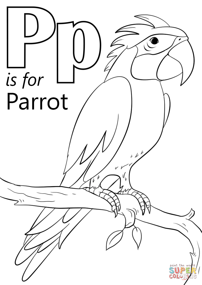 Letter P Is For Parrot Coloring Page   Free Printable Coloring Pages - Free Printable Parrot Coloring Pages