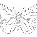 Monarch Butterfly Coloring Page | Free Printable Coloring Pages   Free Printable Butterfly Coloring Pages