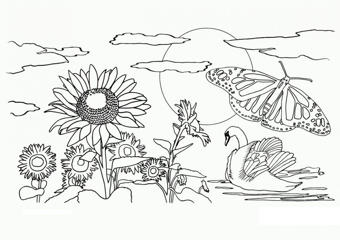 Pinpainting Nature On Paintingnature.club   Coloring Pages - Free Printable Nature Coloring Pages