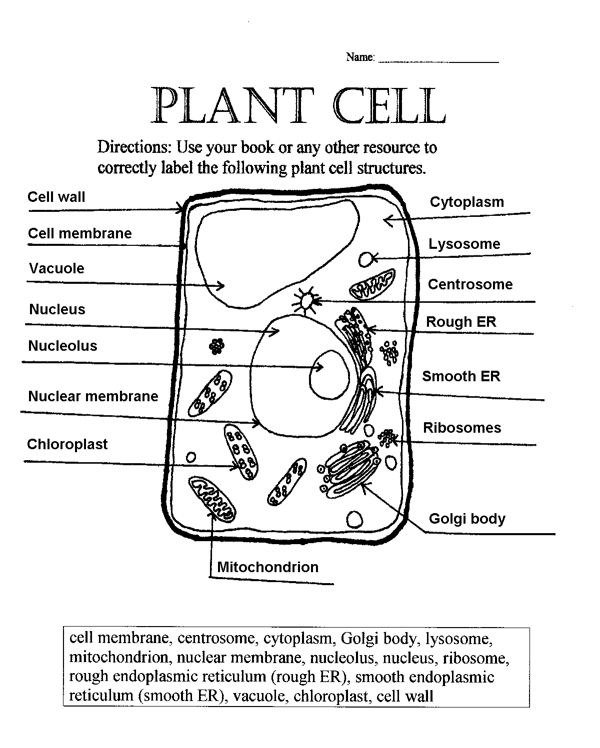 Plant Cell Parts Worksheet With Word Bank | Name What Makes You Tick - Free Printable Cell Worksheets