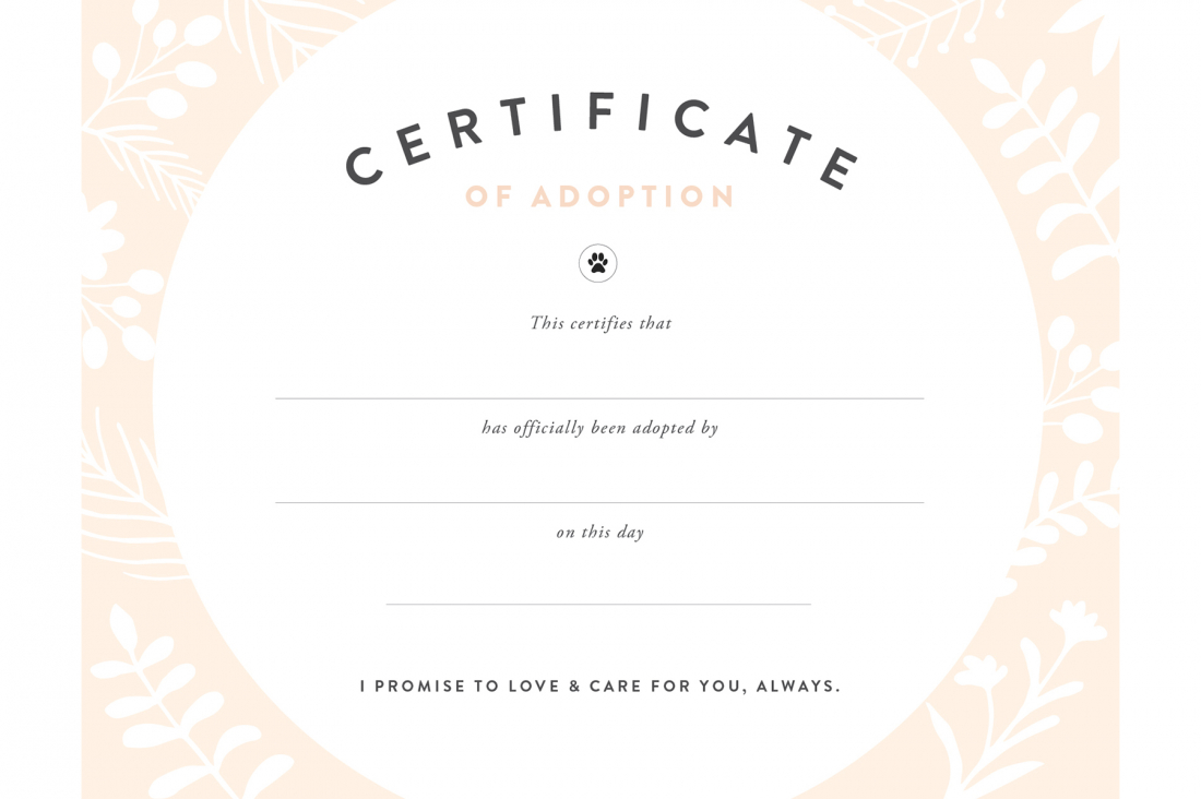 Pretty Fluffy - Free Printable Best Daughter Certificate