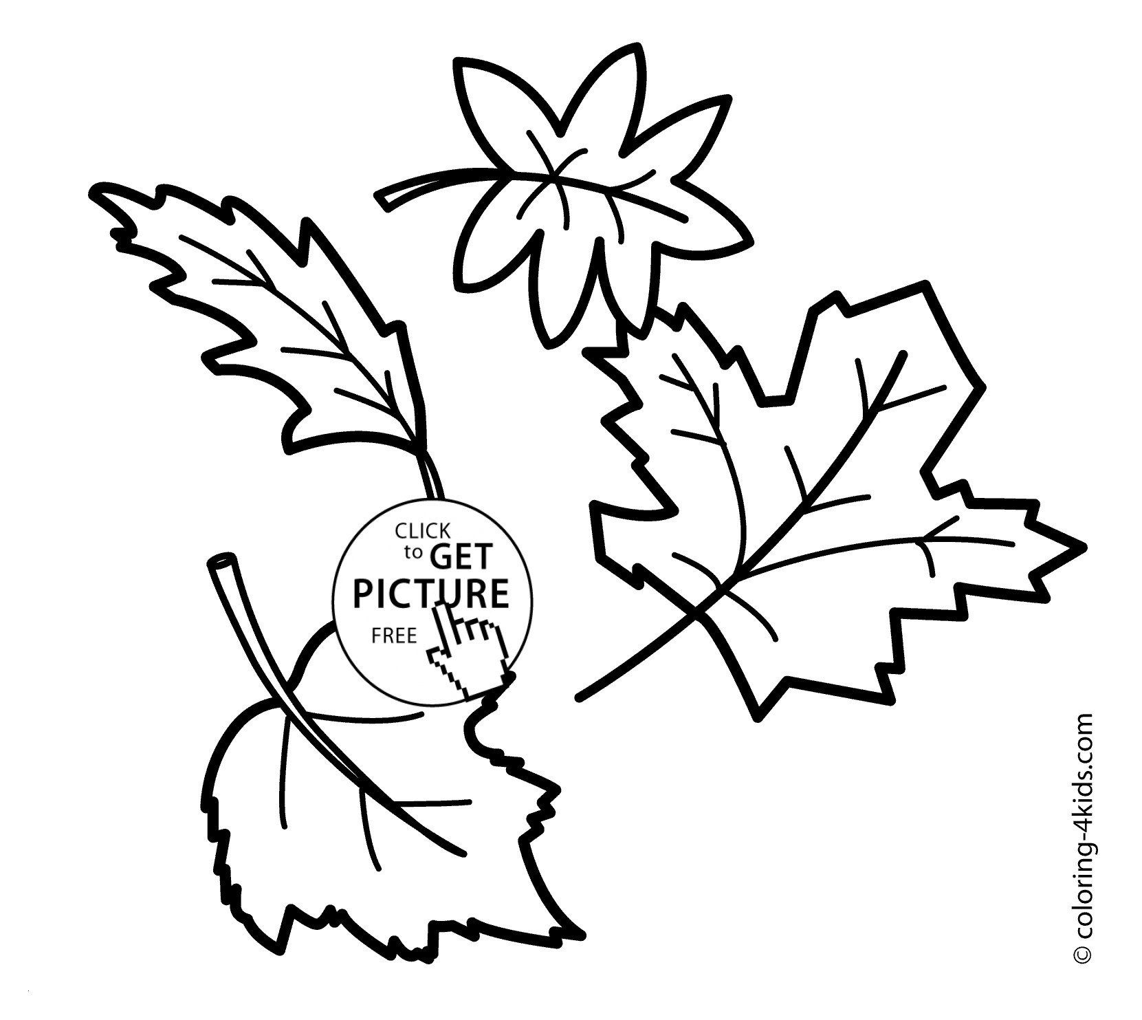 Printable Colored Autumn Leaves | Download Them Or Print - Free Printable Fall Leaves Coloring Pages