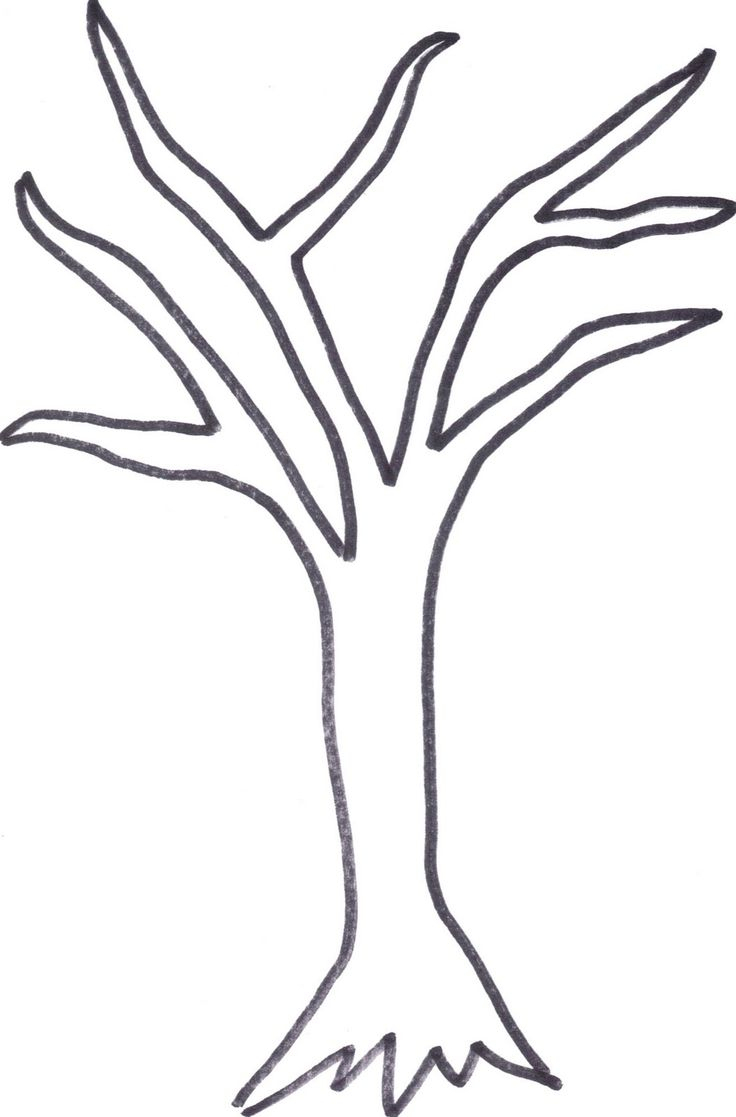 Printable Tree Trunk | Here Is The Tree Outline If Anyone Wants To - Free Printable Tree Template