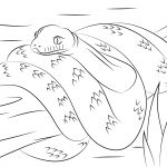 Scrub Python Coloring Page | Free Printable Coloring Pages   Free Printable Pictures Of Australian Animals