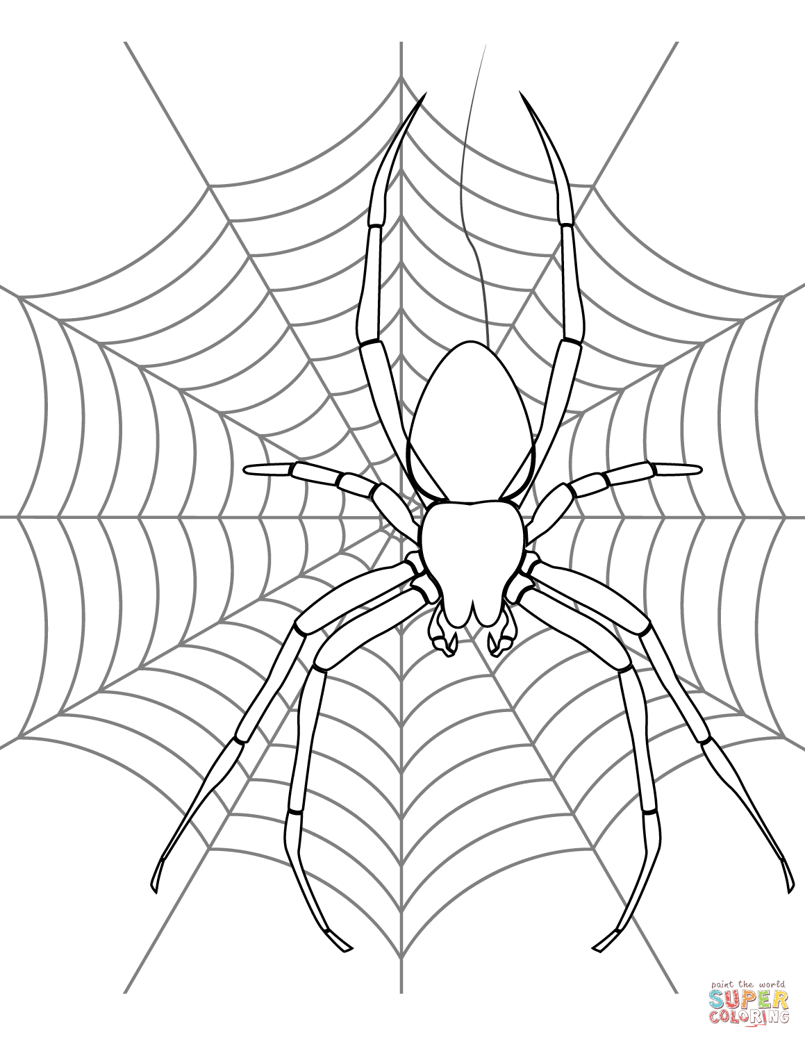Spider On Its Web Coloring Page   Free Printable Coloring Pages - Free Printable Spider Web