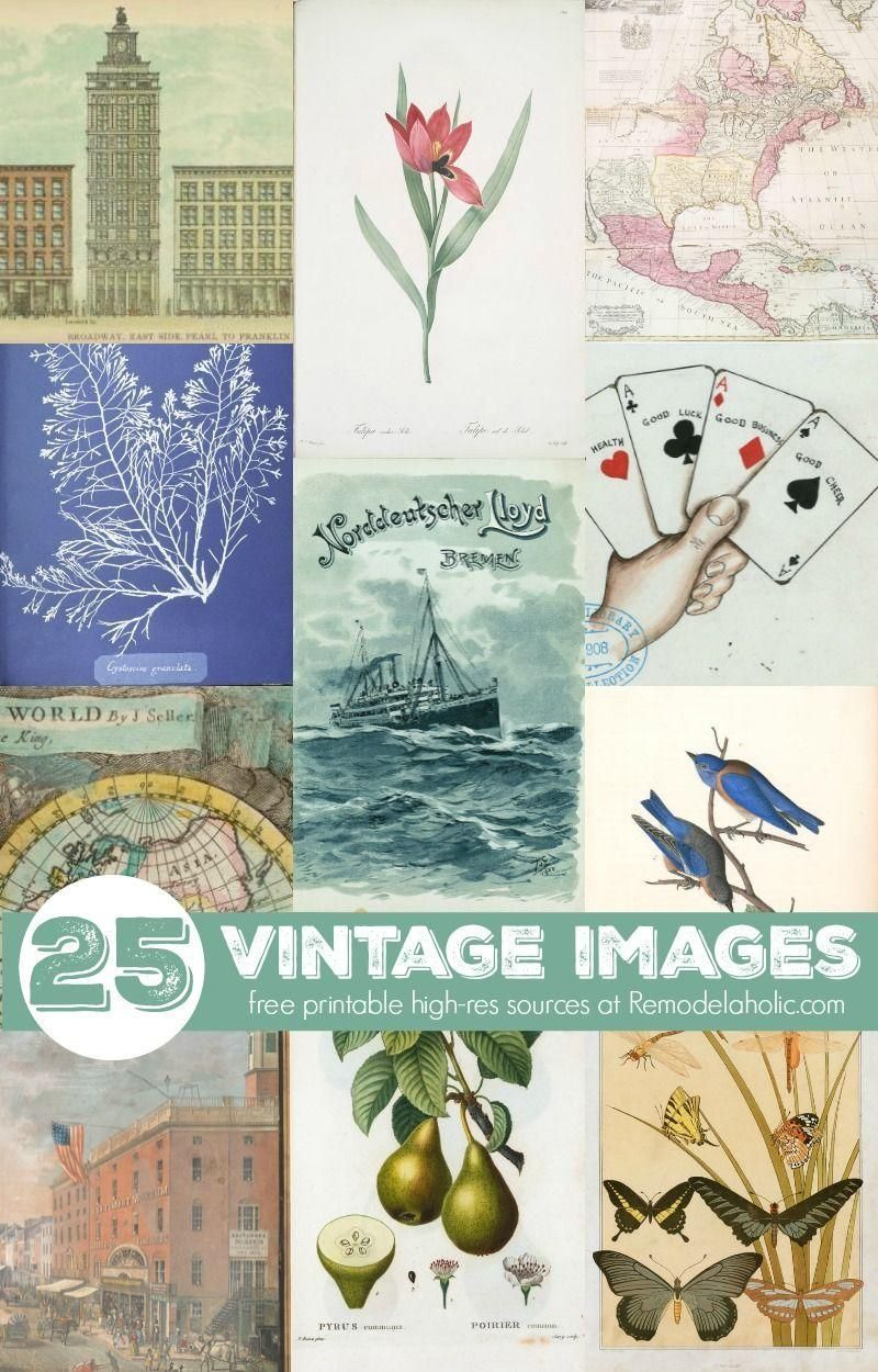These Free Printable Vintage Images Are Beautiful And Make For An - Free Printable Vintage Art