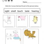 This Is An Easy Way To Learn About Five Senses. You Can Download   Free Printable Worksheets Kindergarten Five Senses