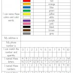 Wild & Fun In Pre K: Assessment  Great Data Collection Sheets But I   Free Printable Pre K Assessment Forms
