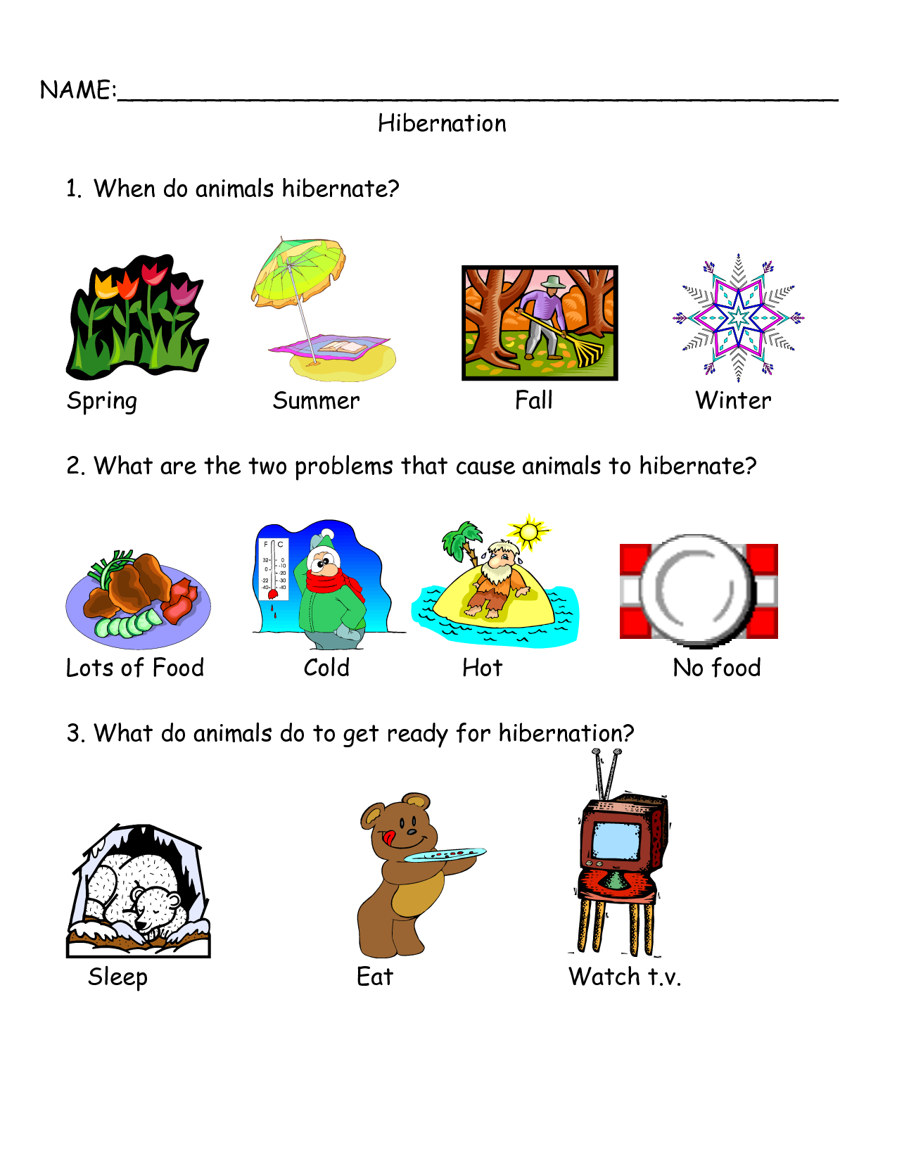 Worksheets On Bear Hibernation - Google Search | Bear Hibernation - Free Printable Hibernation Worksheets